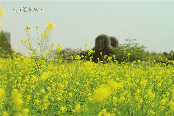 广州岭南印象园