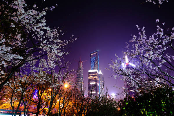 上海环球金融观光